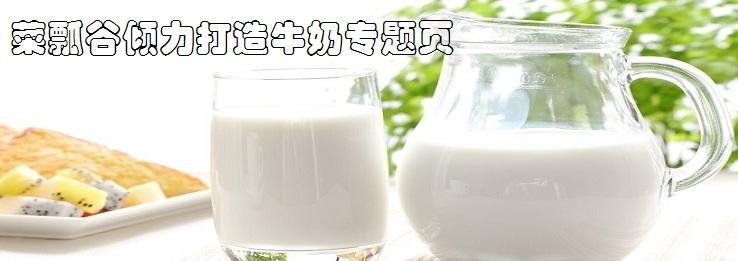 菜瓢谷倾力打造牛奶专题页